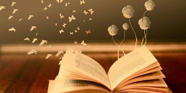 libro bellezza