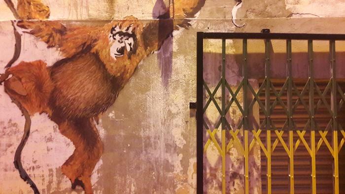 orango-muro-kuching